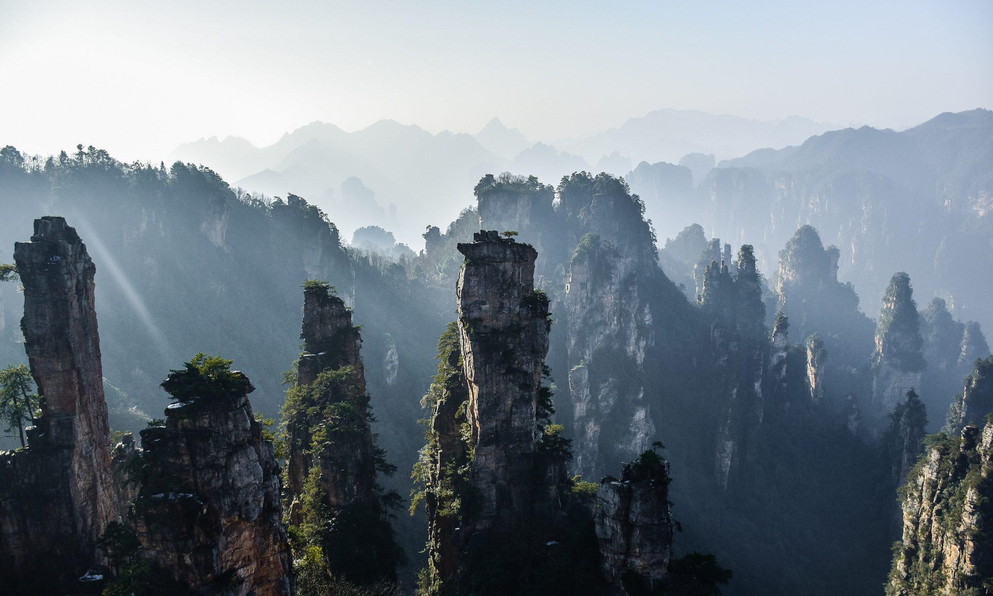 Corsi di Tai Chi Chuan a Schio